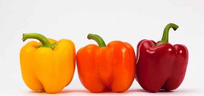 Oranje gevulde paprika